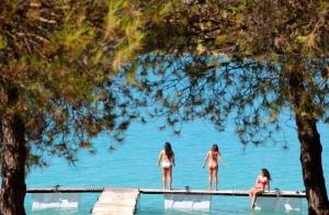 http://oferplan-imagenes.ideal.es/sized/images/camping_los_bermejales_oferplan_ocio_verano-300x196.jpg
